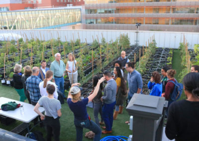 BMC Rooftop Farm Tour 2017
