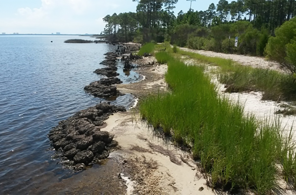 Edge Conditions: Valuing the Marginal – A Living Shorelines Case Study